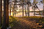 Sunset on Tauton Bay in Hancock County, Maine, USA