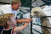 Kathy Malock and grandson Lucas Malock feed an alpaca in the Woody's Menagerie tent during the SEMO District Fair on Wednesday, Sept. 15, 2010 in Cape Girardeau, Missouri.