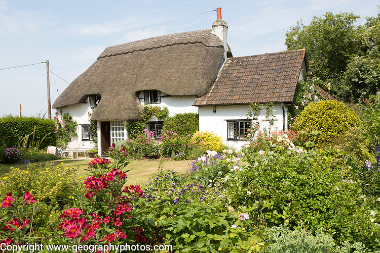 Garden around thatched country cottage in summer, Cherhill, Wiltshire, England property release available