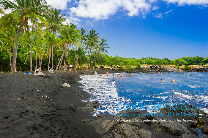 Punaluu Black Sand Beach, coconut grove, green sea turtle, Chelonia mydas, basking on the beach and people playing, Big Island, Hawaii, USA, Pacific Ocean