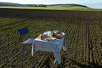 Germany, table with plate with german food on field / DEUTSCHLAND Tisch mit Teller mit deutschem Essen auf dem Feld