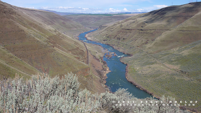 Gordon Ridge Rapids and the Lower Deschutes Canyon.