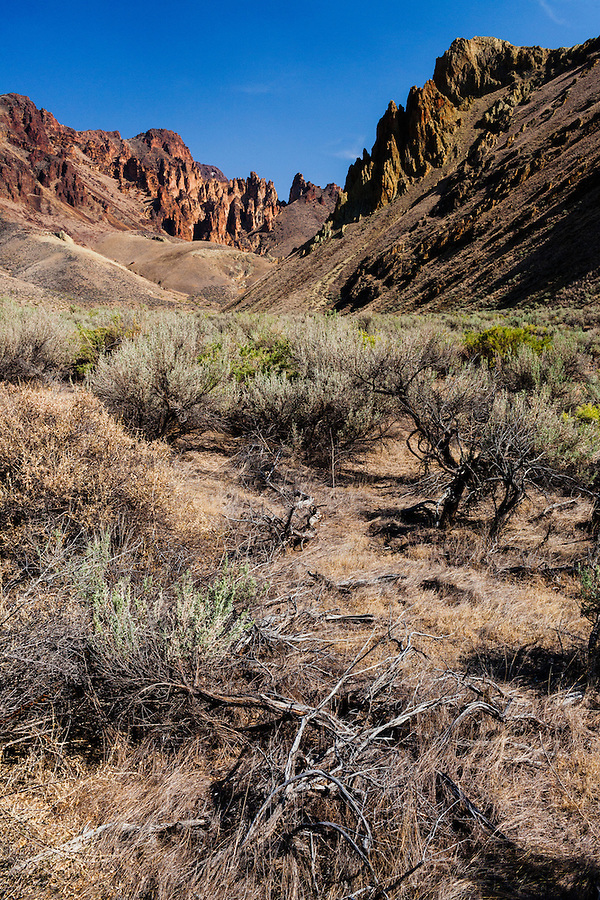 A warm summer sun blazes down on the igneous volcanic tuff, sagebrush, arid ground in Leslie Gulch, found in Southeast Oregon.