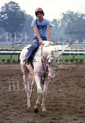 Clarence Stewart, the first white male ever registered by the Jockey Club, in 1979.  He later sired a white foal named White Flight, who disappeared through the Unadilla, NY, auction several years ago.