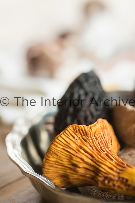 Detail of a 1950's Hermes mushroom