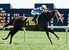 Jolena Jo winning at Delaware Park on 9/12/12