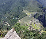 View of lizard on rock overlooking Machu Picchu.  (Focus on lizard)