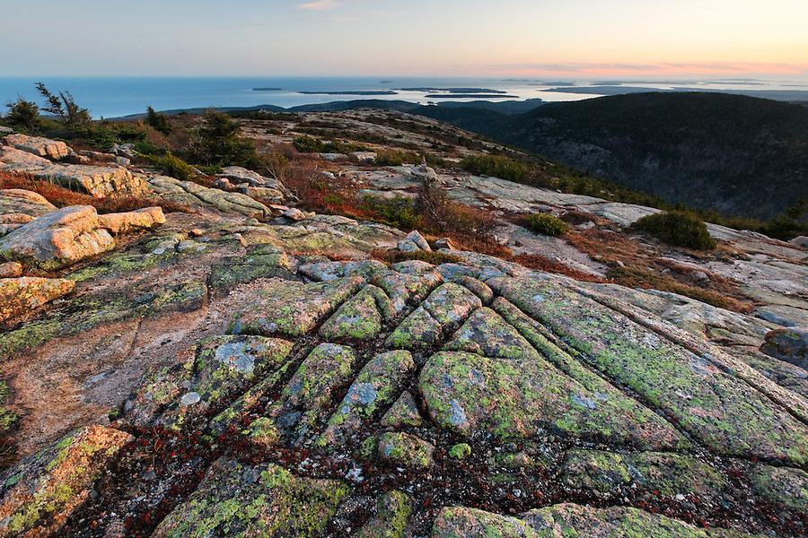 Fall color amidst granite bedrock on summit of Cadillac Mountain at sunset, Mount Desert Island, Acadia National Park, near Bar Harbor, Maine, USA