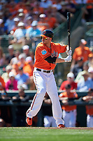 Baltimore Orioles designated hitter Chris Davis (19) at bat during a Spring Training game against the Minnesota Twins on March 7, 2016 at Ed Smith Stadium in Sarasota, Florida.  Minnesota defeated Baltimore 3-0.  (Mike Janes/Four Seam Images)