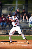 FDU-Florham Devils shortstop Joseph Breymeier (19) at bat during the second game of a doubleheader against the Farmingdale State Rams on March 15, 2017 at Lake Myrtle Park in Auburndale, Florida.  FDU-Florham defeated Farmingdale 8-4.  (Mike Janes/Four Seam Images)