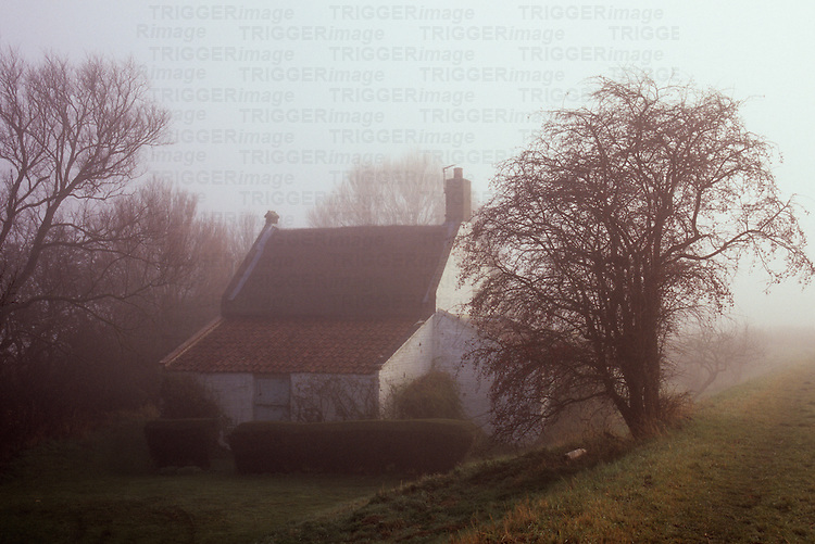Small white painted cottage surrounded by alder willow and hawthorn trees standing in isolation in early morning winter fog
