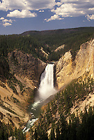 Yellowstone National Park, WY, Yellowstone River, Lower Falls, Canyon Village, Wyoming, Scenic view of Lower Falls cascading down the canyon in Canyon Village from Lookout Point in Yellowstone Nat'l Park in Wyoming. The Grand Canyon of Yellowstone.