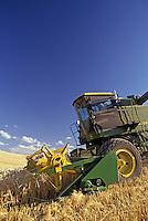 Combine harvesting wheat. WA. MR