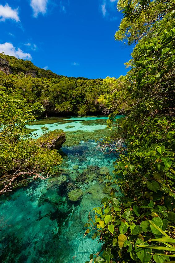 Natural Aquarium, Island of Mare, Loyalty Islands, New Caledonia