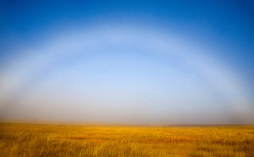SLOW LYING FOG FORM A BOW, ALSO KNOWN AS A FOGBOW, IN YELLOWSTONE NATIONAL PARK,WYOMING