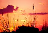 BOTSWANA, Africa, Okavango Delta Sunset