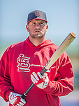 4 March 2013: St. Louis Cardinals first baseman Matt Adams awaits his turn in the batting cage prior to a Spring Training game against the Minnesota Twins at Roger Dean Stadium in Jupiter, Florida. The Twins shut out the Cardinals 7-0 in Grapefruit League play. Mandatory Credit: Ed Wolfstein Photo *** RAW (NEF) Image File Available ***
