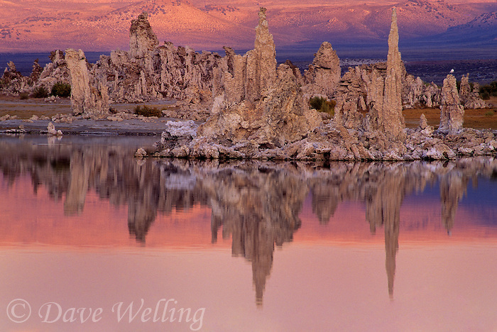 761950083 lee vining tufas reflected in the calm waters of mono lake near lee vining california