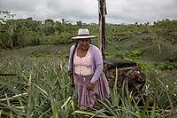 """A Quechua female coca grower known as """"cocalero"""", walks in the family crops, in Entre Rios, Chapare province, Bolivia. November 28, 2019.<br /> Une cultivatrice de coca quechua, connue sous le nom de """"cocalero"""", se promène dans les cultures familiales, à Entre Rios, province du Chapare, Bolivie. 28 novembre 2019."""