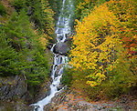 Ross Lake National Recreation Area, Washington: Waterfalls flowing out of the North Cascades mountains in to the Skagit river with autumn colored forest