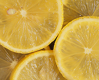 FRUIT - LEMON SLICES