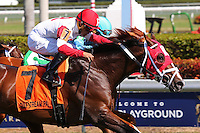 HALLANDALE BEACH, FL - FEBRUARY 04:  Kitten's Cat (KY) #7 with jockey Luis Saez on board, duels with Clyde's Image (KY) #5,  to win the Kitten's Joy Stakes  at Gulfstream Park on February 04, 2017 in Hallandale Beach, Florida. (Photo by Liz Lamont/Eclipse Sportswire/Getty Images)