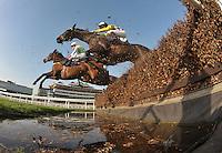 Horse Racing 2012-03