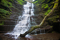 Water-break-its-neck waterfall, Radnor Forest, Wales