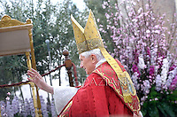 Pope Benedict XVI gestures as he attends the Palm Sunday celebration at Saint Peter's square at the Vatican, on April 1, 2012. The Palm Sunday marks the holy week of Easter in celebration of the crucifixion and resurrection of Jesus Christ.