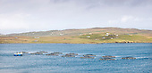 Shetland - central mainland - a fish farm in Dury Voe near Laxo Pier with Vidlin and Lunnasting in the distance - picture by Donald MacLeod - 02.04.14 – 07702 319 738 – clanmacleod@btinternet.com – www.donald-macleod.com