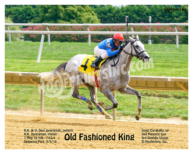 Old Fashioned King at Delaware Park on 9/5/16