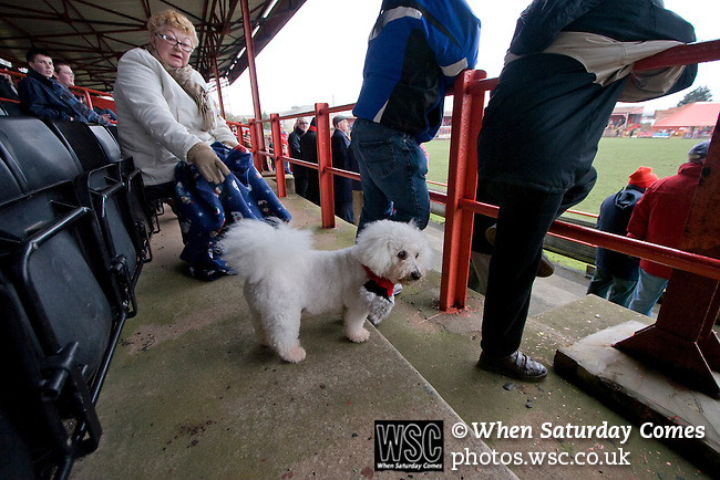 Workington AFC 0 Boston United 1, 24/02/2008. Borough Park, Blue Square North. A dog wearing a home team's scarf on the Popular Side of the ground during the Blue Square North fixture between hosts Workington AFC (red) and Boston United at Borough Park. The visitors won with a solitary sixth-minute goal by Jon Rowan in front of 388 spectators. Both Workington AFC and Boston United were members of the Football League, the Cumbrians losing League status in 1977 while the Lincolnshire club were relegated in 2007 and demoted two divisions for financial irregularities. Photo by Colin McPherson.