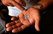 Roraima, Brazil. Diamonds in a garimpeiro's hand at an illegal garimpo placer mine.