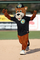 April 28, 2007: Kane County Cougars mascot at Elfstrom Stadium in Geneva, IL  Photo by:  Chris Proctor/Four Seam Images