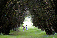 Lisnavagh, Ireland