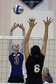 Auburn Hills Avondale at Troy, Varsity Volleyball, 10/31/11
