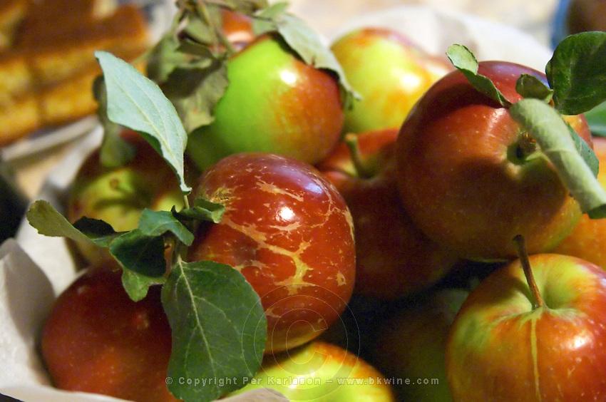 Montenegrin food speciality: fresh apples on a plate Durovic Jovo Winery, Dupilo village, wine region south of Podgorica. Vukovici Durovic Jovo Winery near Dupilo. Montenegro, Balkan, Europe.