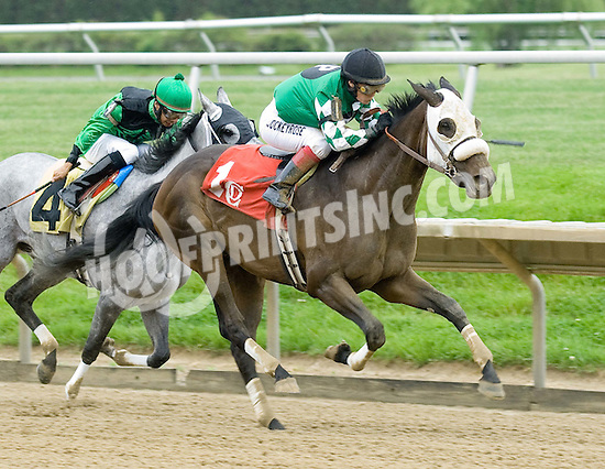 Pine Island Girl winning at Delaware Park on 5/17/10