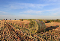 A hay roll lying in a ploughed field near Larnaca in Cyprus.