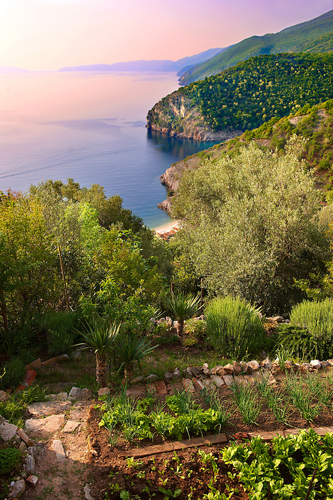 Garden in Beli hill town overlooking the harbour & cliffs, Cres Island, Croatia