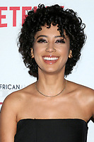 LOS ANGELES - JAN 22:  Andy Allo at the 2020 African American Film Critics Association Awards at the Taglyan Complex on January 22, 2020 in Los Angeles, CA