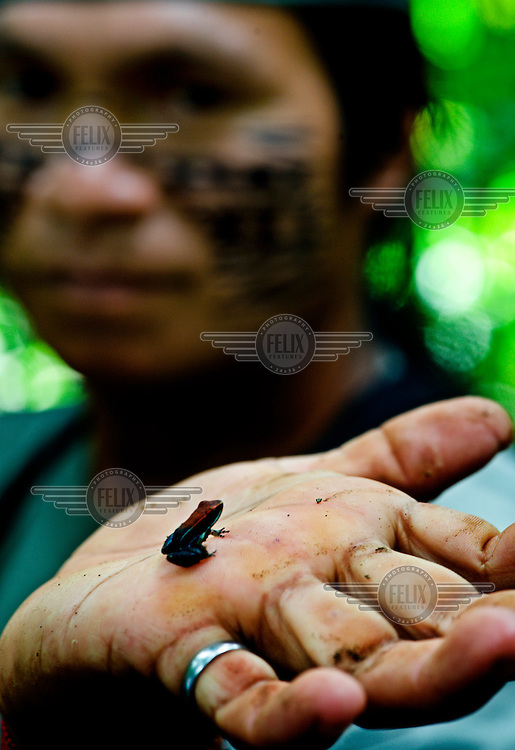 Jorge holds up a small species of frog, giving an example of the biodiversity of the region.