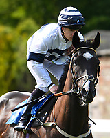 The Secrets Out ridden by Richard Kingscote goes down to the start of The Smith & Williamson Handicap (Class 6) during Afternoon Racing at Salisbury Racecourse on 17th May 2018