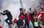 Solna 2015-11-14 Fotboll EM-kval , Sverige - Danmark :  <br /> Danmarks supportrar jublar efter Danmarks reducering till 1-2 av Nicolai J&ouml;rgensen under matchen mellan Sverige och Danmark <br /> (Photo: Kenta J&ouml;nsson) Keywords:  Sweden Sverige Solna Stockholm Friends Arena EM Kval EM-kval UEFA Euro European 2016 Qualifying Qualifier Playoff Denmark Danmark supporter fans publik supporters jubel gl&auml;dje lycka glad happy