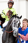 Feb 2011:  Mission Impazible and Rajiv Maragh (3) before the Mineshaft handicap at the Fairgrounds in New Orleans, Louisiana.
