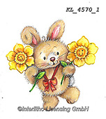 EASTER, OSTERN, PASCUA, paintings+++++,KL4570/1,#e#, EVERYDAY ,rabbit,rabbits