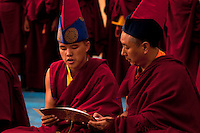Buddhist monks chanting prayers from the scrolls during a Losar New year ceremony