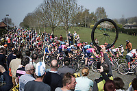 Peloton cornering on the Haaghoek cobbles <br /> <br /> <br /> 103rd Ronde van Vlaanderen 2019<br /> One day race from Antwerp to Oudenaarde (BEL/270km)<br /> <br /> ©kramon