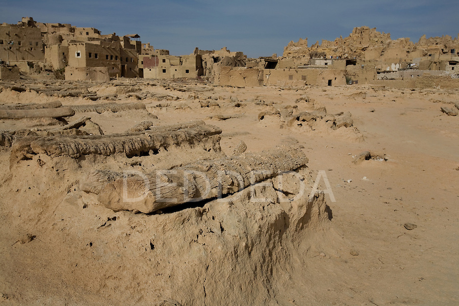 A Siwan cemetery at the base of the 13th century mud-brick fortress of Shali in Siwa Town of the Siwa Oasis, near the Libyan border in Egypt.