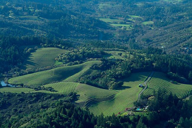 Aerial of vineyard on Diamond Mountain
